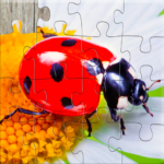 Insect Jigsaw Puzzles Game – For Kids Adults MOD Unlimited Money 25.0