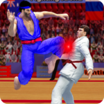 Tag Team Karate Fighting Tiger World Kung Fu King MOD Unlimited Money 1.8.1
