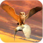 Clan of Owl MOD Unlimited Money 1.1