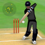 Smashing Cricket – a cricket game like none other MOD Unlimited Money 3.0.2